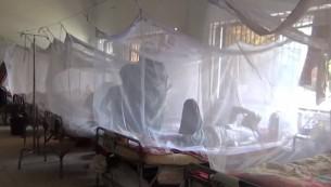 Vegetable vendor dies of dengue in Khulna; 1,706 new patients hospitalised